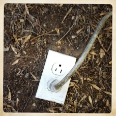 Photo of an electrical outlet in the ground.