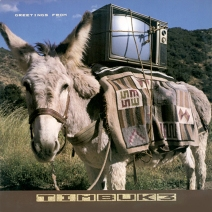 """Greetings From Timbuk3"" album cover art"