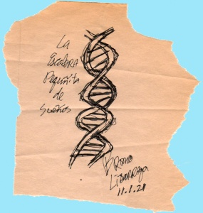 Signed drawing of a dna double-helix.