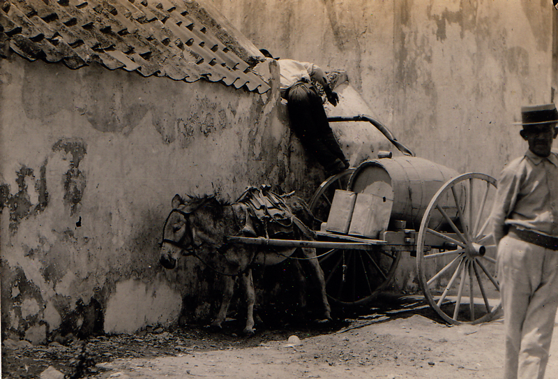 Old photo of two men and a mule.