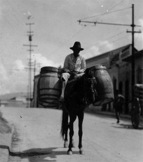 Old photo of a man on a mule with barrels.